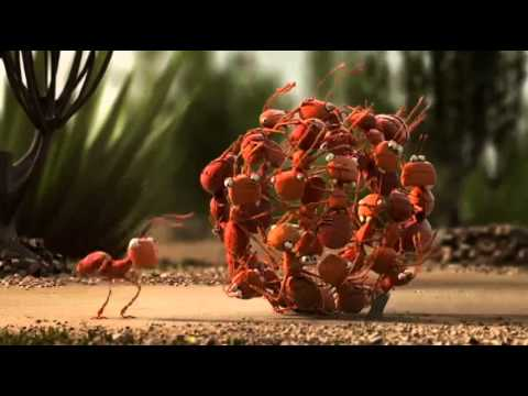 The Power of Teamwork – Funny Animation.