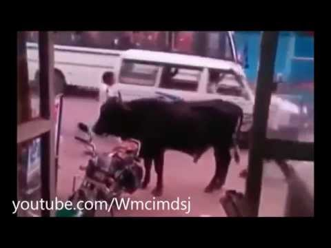 Funny videos accidents compilation 1 2013
