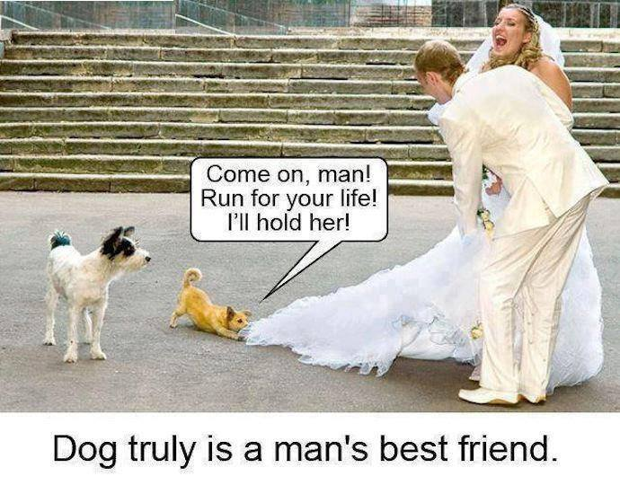 Really Funny Pictures 28