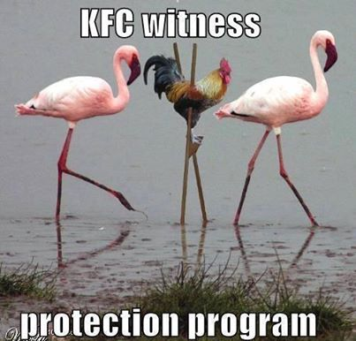 Witness Protection!
