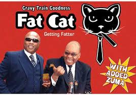 Fat cat peanut butter