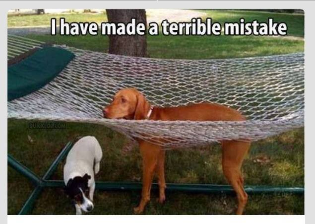 Terrible Mistake