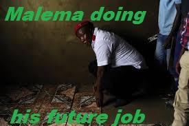 Malema doing his future job.