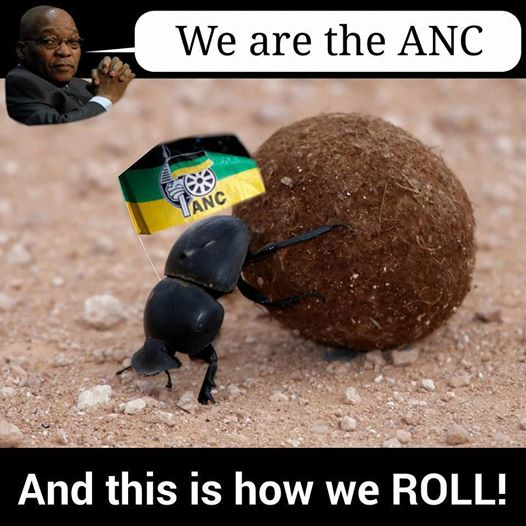 How the ANC roll