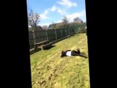 Two girls fail video    ★ 7 second FUNNY Video 😂
