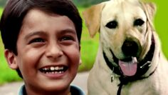 Bollywood Full Movies – Kabhi Pass Kabhi Fail – कभी पास कभी फैल – New Hindi Dubbed Movies