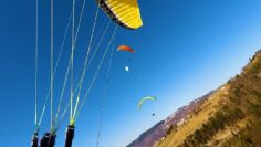 BEST OF 2020 PARAGLIDING GONE WRONG AND Extreme Sports   Live Stream
