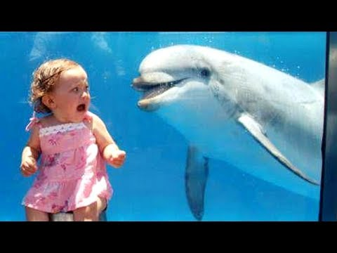 LAUGH SUPER HARD with SUPER FUNNY KIDS – Funny BABY & KID FAIL compilation